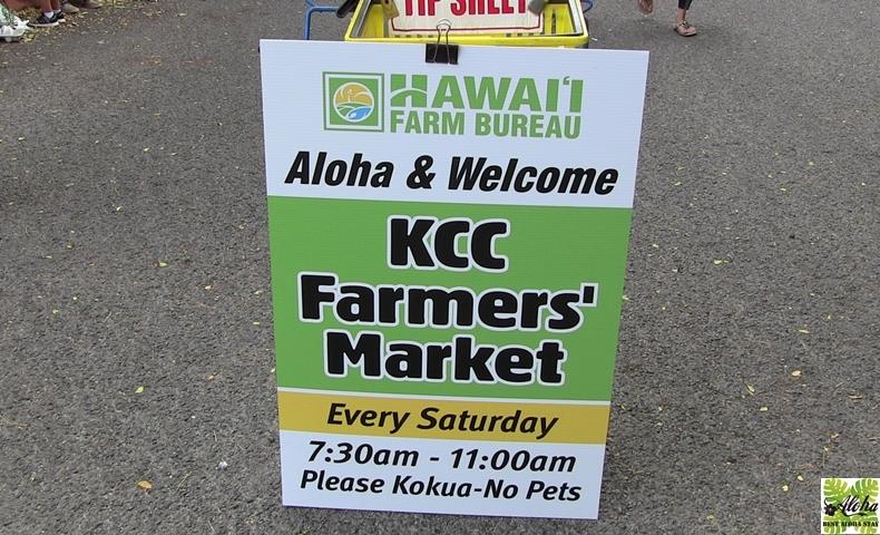ベストアロハステイ-アクアパシフィックモナーク-魅力のハワイを満喫#001
