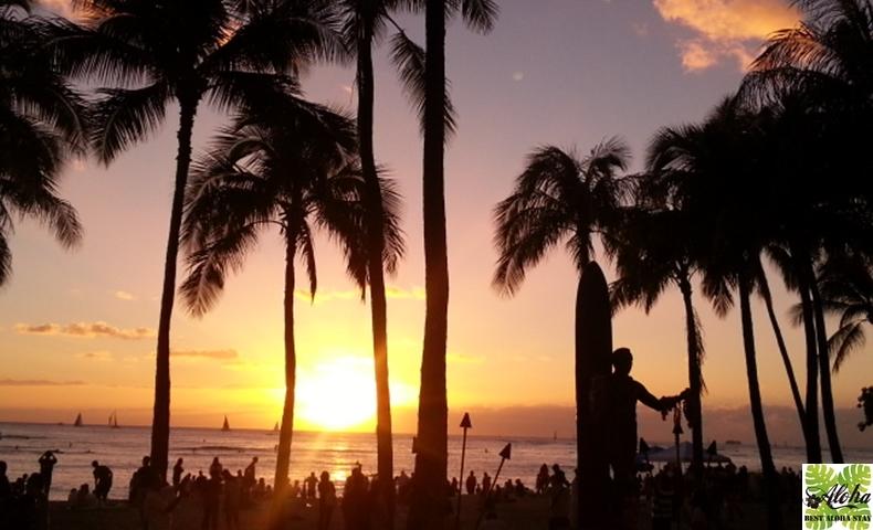 パシフィックモナーク Hawaii Must 004-3